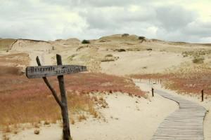Curonian Spit dunes